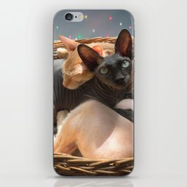 Love forever iPhone Skin