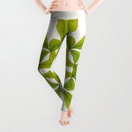 Leaves Mandala Leggings