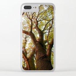 Leaves Reaching To Heaven II - Warm Tone Clear iPhone Case