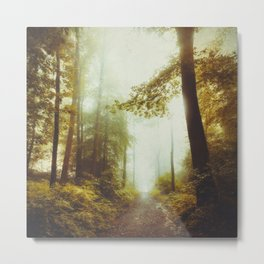 Path to Inner Peace Metal Print