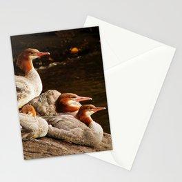 Common Merganser Family Stationery Cards
