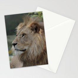 Lion_20150607_by_JAMFoto Stationery Cards