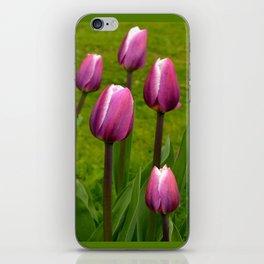 Pink Tulip iPhone Skin