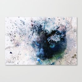 Behind Blue Eyes Canvas Print