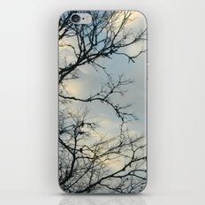 Scarred Skys iPhone Skin