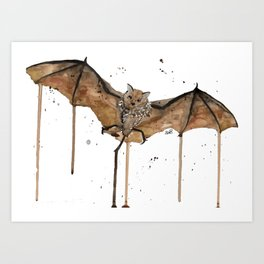 Flying Brown Bat Art Print