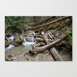 fallen falls Canvas Print