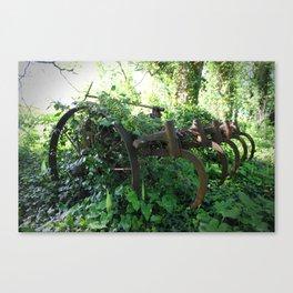Rusty Relic. Canvas Print