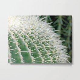 A Sungoddess - Cactus II Metal Print