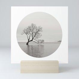 That Wanaka Tree Mini Art Print