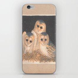 Barn Owls iPhone Skin