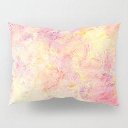 Plastered Memories 9 Pillow Sham