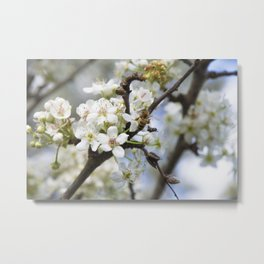 Bee in a Tree Metal Print