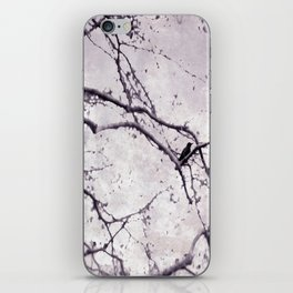 Winter Crow iPhone Skin