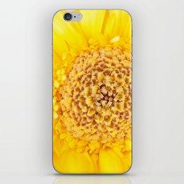 Sunny Summer Love - Yellow Gerbera #1 #decor #art #society6 iPhone Skin
