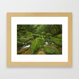 River along Shiratani Unsuikyo rainforest trail on Yakushima Island, Japan Framed Art Print