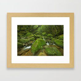 River along Shiratani Unsuikyo rainforest trail on Yakushima Island, Japan Framed Art Print