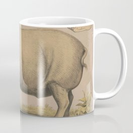 Vintage Illustration of a Domesticated Pig (1874) Coffee Mug