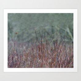 In the Marsh Art Print