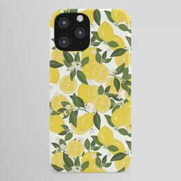 Summer Punch iPhone Case