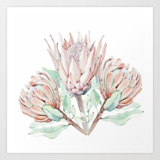 Protea #society6 #buyart Art Print