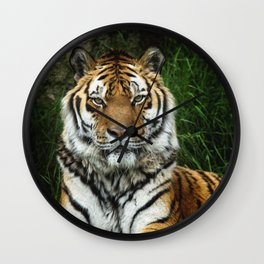 Majestic Fixed Tiger Stare Wall Clock