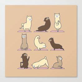 ALPACA YOGA Canvas Print