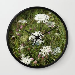 Flowers Queen Anne's Lace Wall Clock