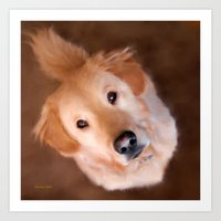 golden retriever Art Prints featuring Golden Retriever by Christina Rollo