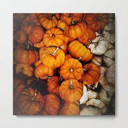 Tiny Pumpkins Pile Metal Print