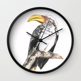 Southern Yellow-Billed Hornbill - Colored Pencil Wall Clock