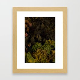 Divorce Bouquet (Past Tense) Framed Art Print