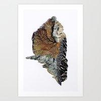 Nature No. 1 Art Print