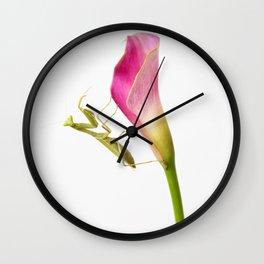 Mantis on Pink Calla Lily Wall Clock