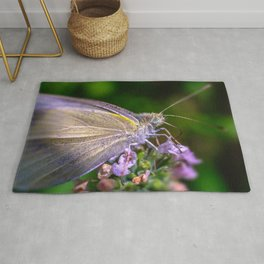 Cabbage White Butterfly, Macro Photograph Rug