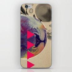 luka iPhone & iPod Skin