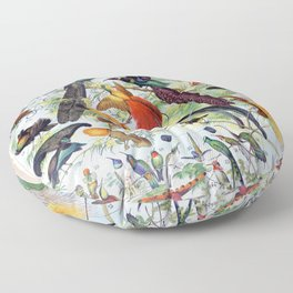 Adolphe Millot - Oiseaux B - French vintage poster Floor Pillow