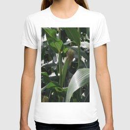 Corn Field on Northern Japanese Farm T-shirt