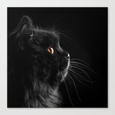 Black Cat 05 Canvas Print