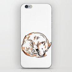 Tero Sleeping I iPhone & iPod Skin