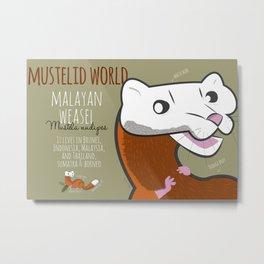 Mustelid World#1 Malayan weasel (c) 2017 Metal Print