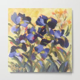 Beautiful Blue Iris Metal Print