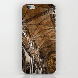 Salisbury iPhone Skin