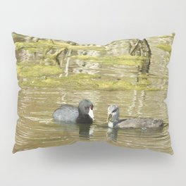 Motherly Love, American Coots Pillow Sham