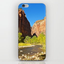 Out of the Narrows iPhone Skin