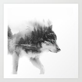 Wolf Stalking Art Print