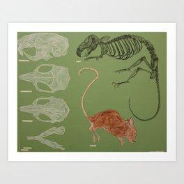 Mortem Mus (Dead Mouse) Art Print