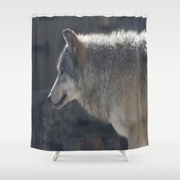 Cute little tongue Shower Curtain