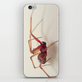 An Unwanted House Guest iPhone Skin