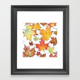 Autumn Maple Leaves Framed Art Print